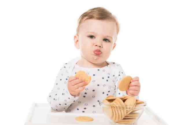 www.yourchoicenutrition.com