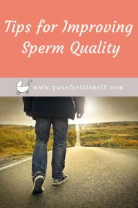 Top Tips to Improve Sperm | Stephanie Roth | Your Fertile Self