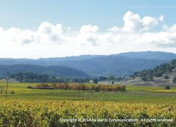 Napa Valley Panorama for Web