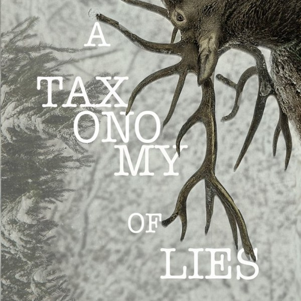A Taxonomy of Lies