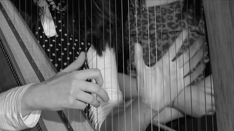 Playing the Irish Harp