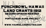 Punchbowl Land Grants Second Opinions 1912:  List of Portuguese Names