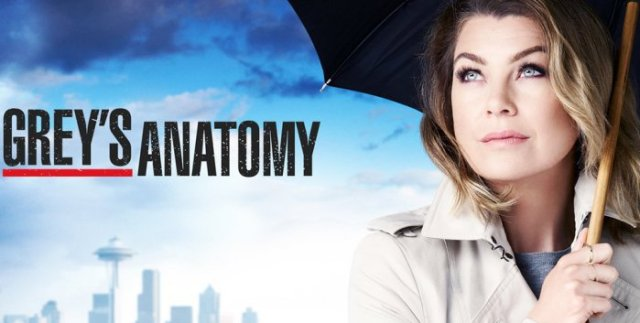 dove-guardare-greys-anatomy-stagione-13-streaming