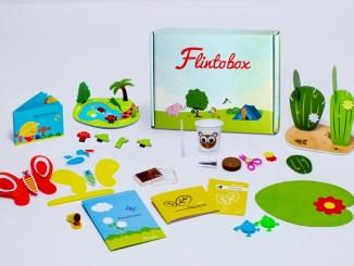 Flintobox Review