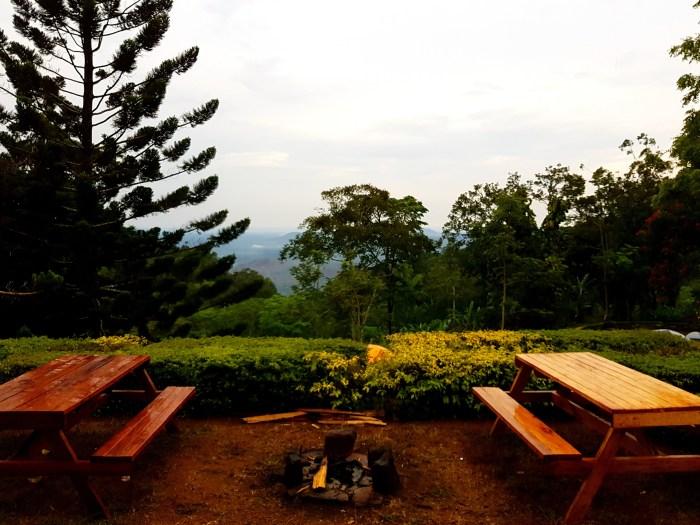 Magoroto Forest Tanzania