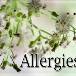 Spring Allergy Tips