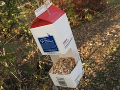 How to Make Basic Birdfeeders