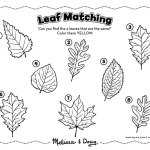 Fall Matching Activity for Kids (Printable)