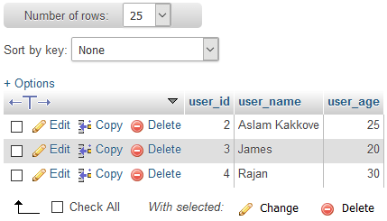 CodeIgniter database inserted data