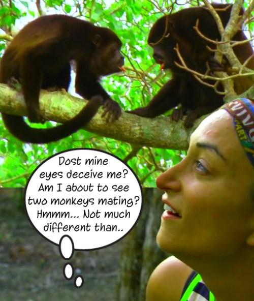 2_monkeysabouttobemating