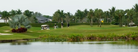 Sarasota Area Golf Courses Sarasota  Bradenton and Venice Golf Courses