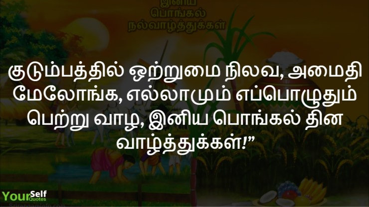 Pongal Wishes Tamil Images and Wallpapers Download