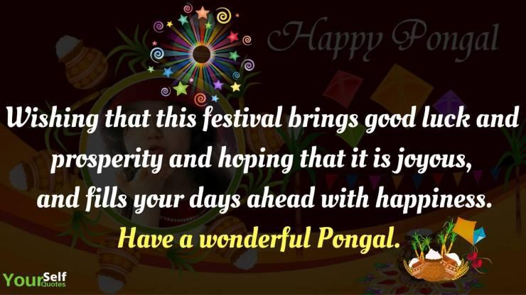 Pongal Wishes Photo