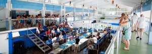 Calpe Fisch market