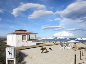 Dog friendly beaches Agua Amarga Alicante