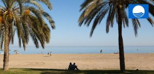 Blue Flag beaches at Playa Flamenca