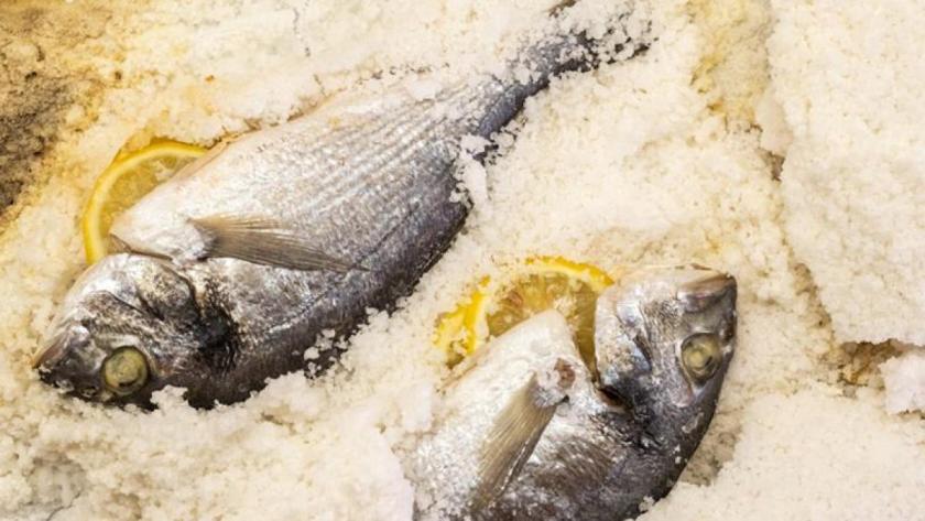 Spanish white fish Dorada