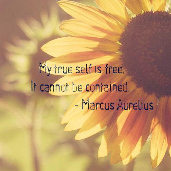 my true self quote