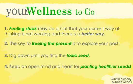 your Wellness to Go: Part I Our Miracle Mind