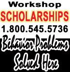 teacher workshop scholarships