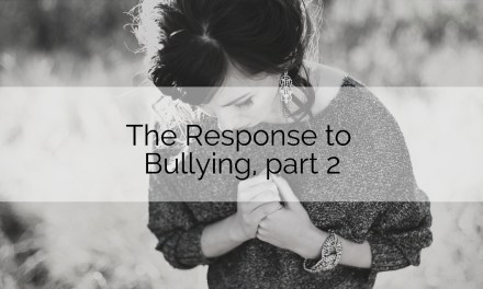 Youth Ministry Basics: The Response to Bullying, pt. 2