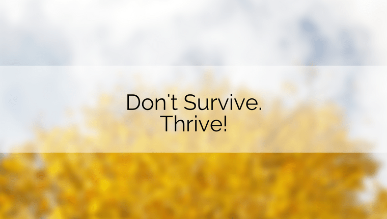 Don't Survive. Thrive!