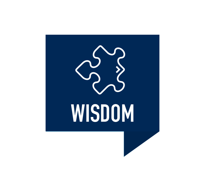 Wisdom Icon with Puzzle Piece