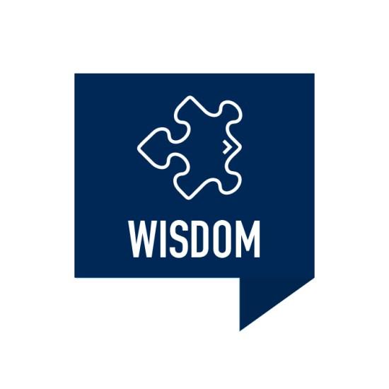 Wisdom Icon with Puzzle Piece