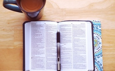 Help Your Students Get into the Bible