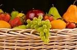 organic foods photo