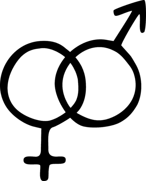 gender roles in society