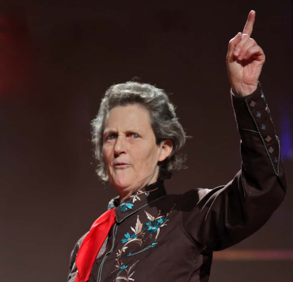 Temple Grandin: A Godsend To Cows