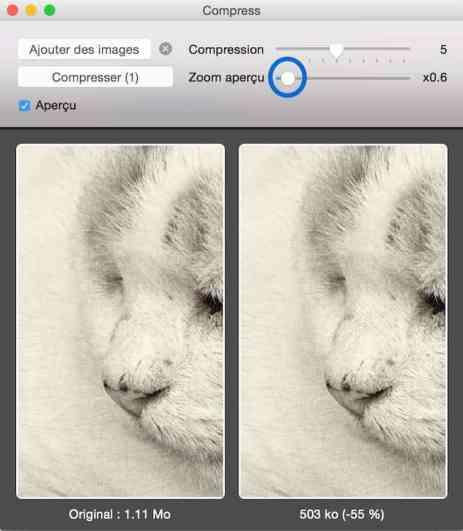 Compress, une super application pour compresser vos images par lot-3