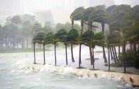 Miami Irma'ya Direniyor!