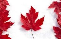 Düş Kadar Güzel Bir Ülke: Kanada