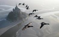 Müthiş Bir Deneyim! Göçmen Kuşlarla Uçmak