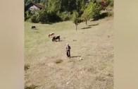 Hayatında İlk Defa Drone Gören Masum Köylü