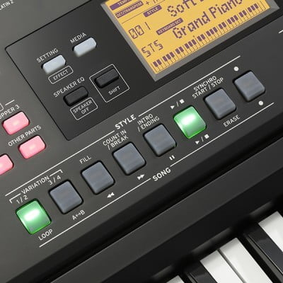 Electric Keyboards and Pianos