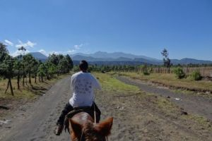 volcan-paricutin-travel-voyage
