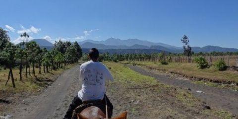 volcan-paricutin-travel-voyage