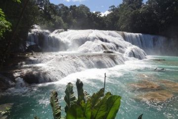 Mexique: Agua Azul