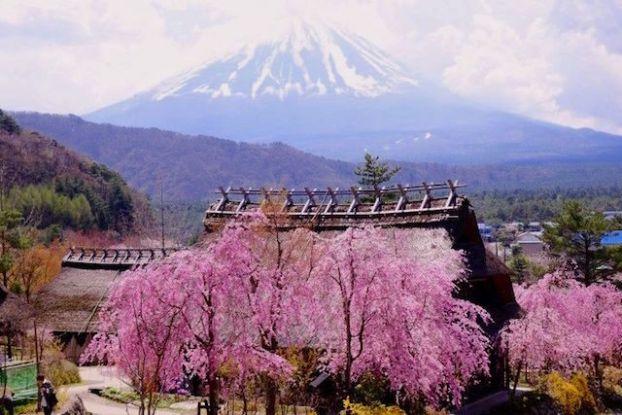 Superbe petit village médiéval de Saiko Iyashi no Sato Nemba avec vue sur le Mont Fuji photo blog voyage tour du monde http://yoytourdumonde.fr