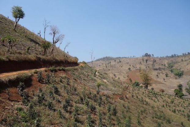 paysages de couleur ou de mort le trekking en birmanie pres de la ville de Hsipaw est a couper le souffle photo blog voyage http://yoytourdumonde.fr