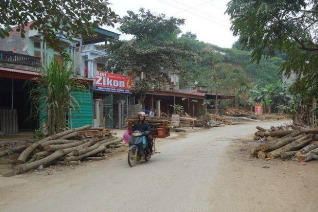 travel-voyage-vietnam-hanoi-village-bois-