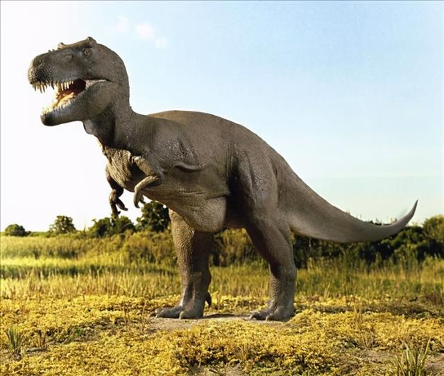 What are the most dangerous creatures in prehistoric times? Tyrannosaurus may only be the bottom