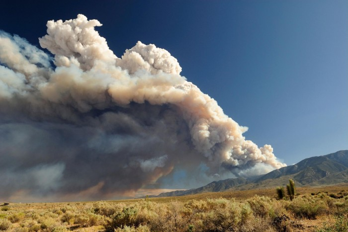 Small particles in wildfire smoke are more harmful than small particles from other sources