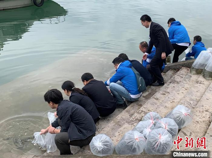 Sichuan-Chongqing political and legal organs cooperate to carry out legal education with case interpretations along the Jialing River