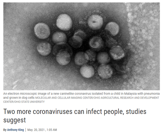 Science: Two more coronaviruses that can infect humans have been discovered