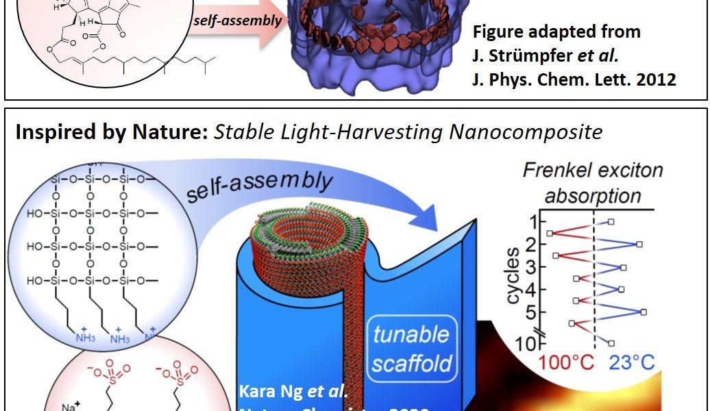 A breakthrough in the stabilization of bio-inspired solar energy harvesting materials