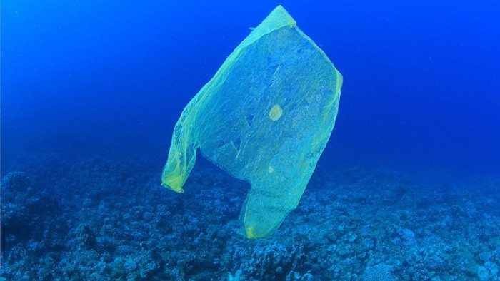 Scientists propose innovative solutions to combat marine pollution